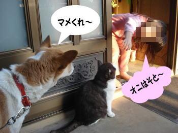 katsu-mozuku5.jpg