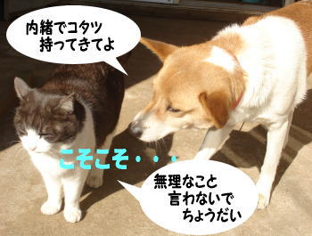 katsu-mozuku7.jpg