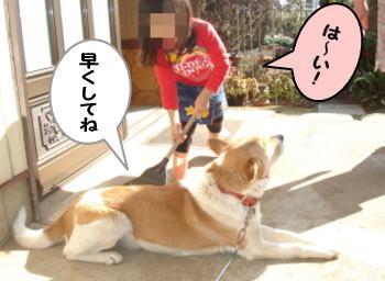 katsu_me.jpg