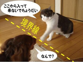 mozuku-kai8.jpg