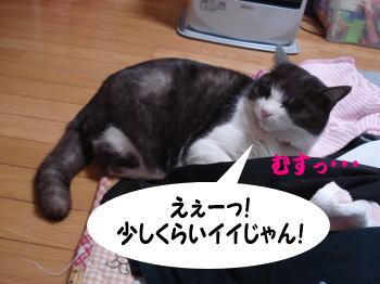 mozuku46.jpg