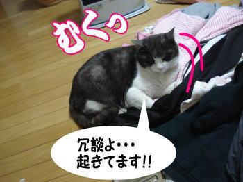 mozuku48.jpg