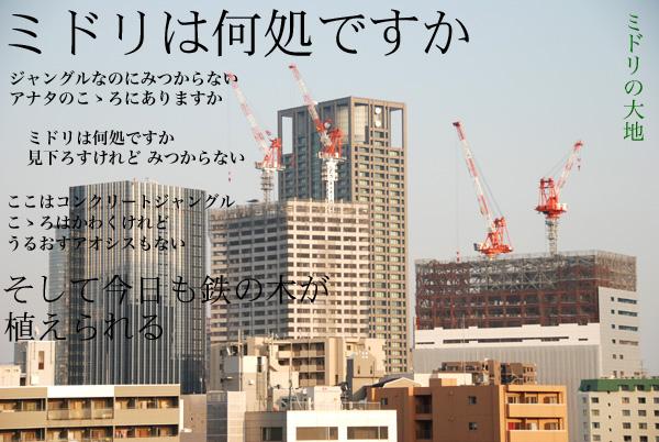 utu_midoridaichi.jpg