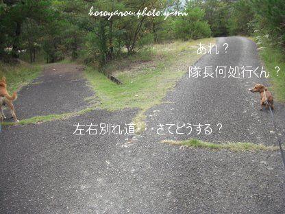 20071011201113.jpg