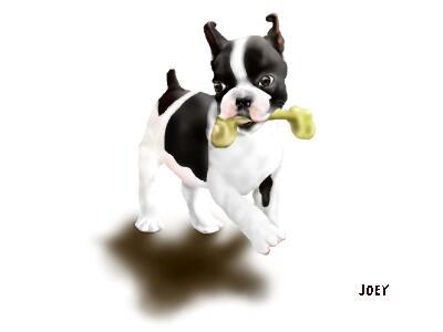 JOEY8-3.jpg