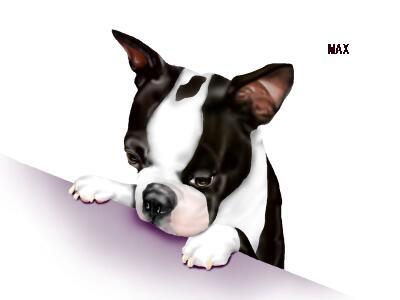 MAX14-5.jpg