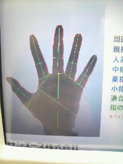 手のサイズ 診断2
