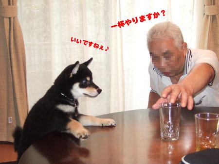 ぶん太の晩酌(2006/7/16)