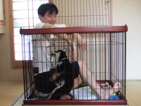ぶん太に来客(2006/7/30)