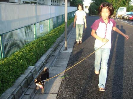 お隣さんの子と散歩(2006/8/16)