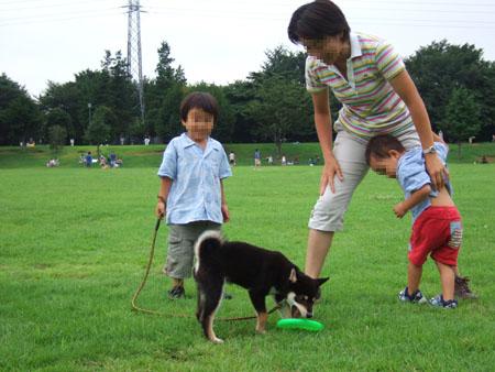 しゅうちゃん、らいちゃんと遊ぶぶん太(2006/8/27)