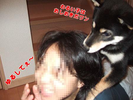 下克上(2006/9/19)