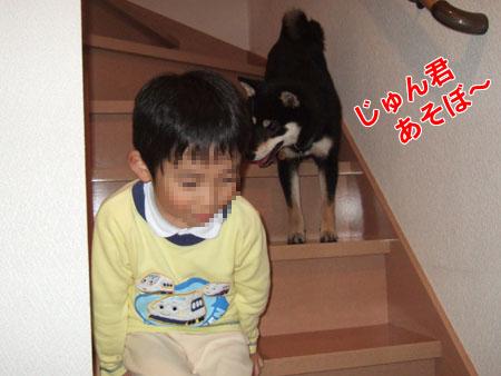 じゅん君とぶん太(2006/11/2)