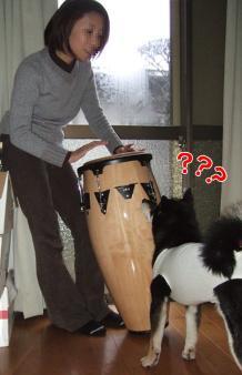 ぶん太とコンガ(2006/11/19)