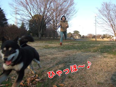 大晦日、走り収め(2006/12/31)