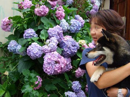 一周年記念(2007/6/18)
