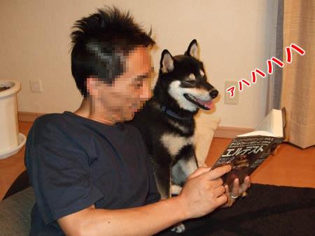 読書中(2007/6/20)
