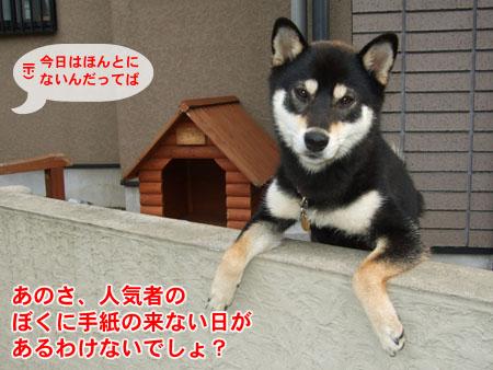 郵便屋さんこんにちは(2007/7/5)