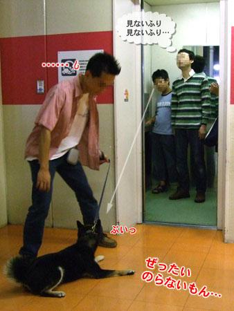 エレベーター初乗り(2007/7/7)