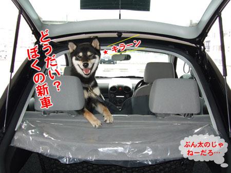 新車購入(2007/7/7)