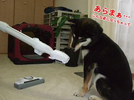 おそうじ(2007/7/21)
