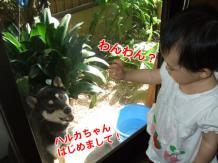 ハルカちゃんのお誕生日会(2007/7/22)