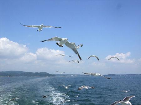 番外編 in 仙台(2007/8/25)