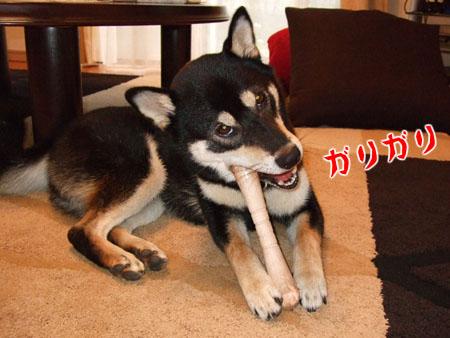 ヤギミルクの棒(2007/8/29)