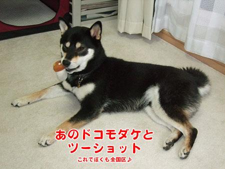ドコモダケの味(2007/10/1)