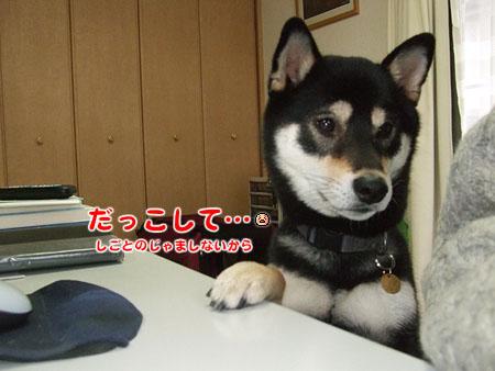 だっこして(2007/12/3)