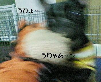 200612062337001.jpg