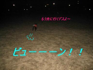 IMG_0601_sh01.jpg
