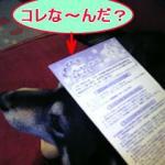 DVC10469