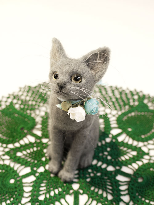 graycat8.jpg