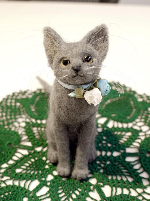 graycat9.jpg