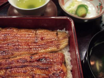 nodaiwa (2)