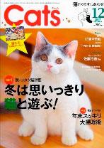 cats-12.jpg