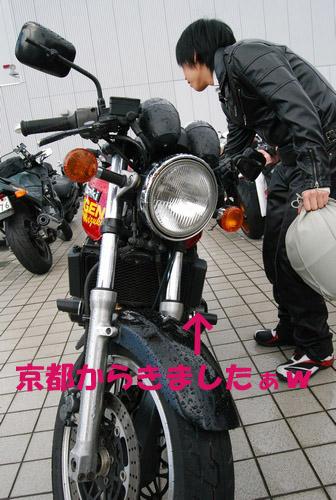 相棒(^ω^)