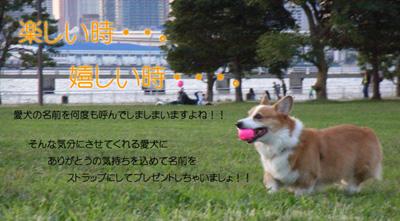 cdp_m_006_400x221.jpg