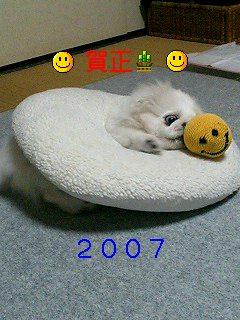 20070105004812.jpg