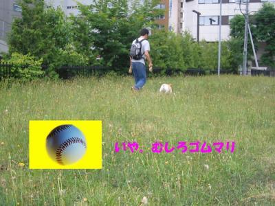 20070713220436.jpg