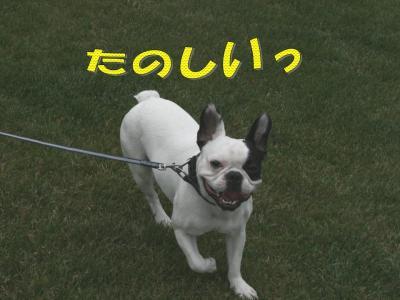 20070730215252.jpg