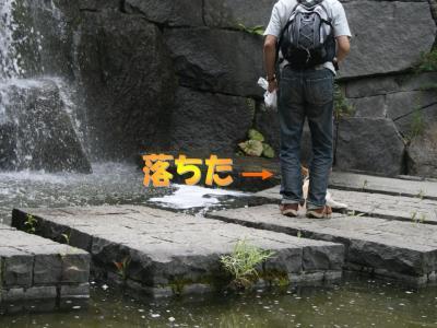 20070731231208.jpg