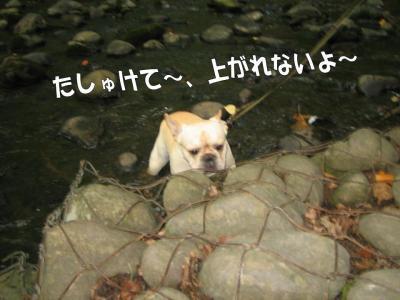 20070809201359.jpg