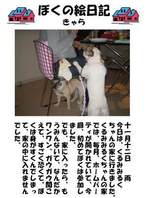 20071113212715.jpg