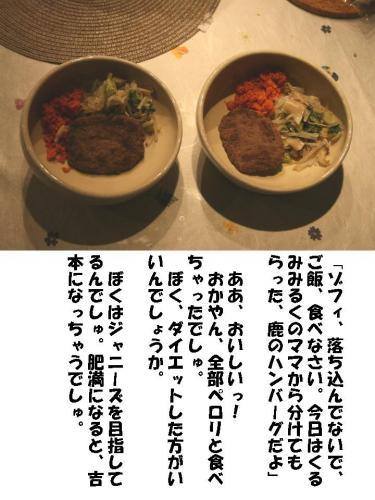 20071117210720.jpg