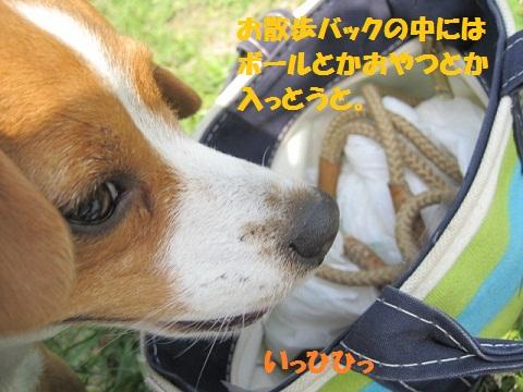 098_20110510085924.jpg