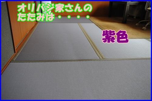DSC_8861_20110701221158.jpg