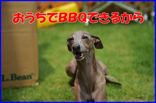 DSC_9038.jpg