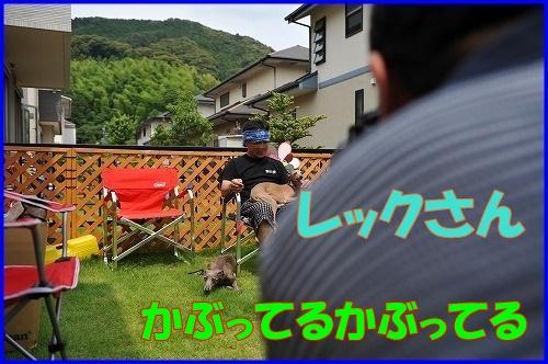 DSC_9054_20110704135853.jpg